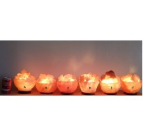 CARVED HIMALAYAN SALT LAMP FIRE BOWL 3.5KG APPROX ( 6 DESIGNS TO CHOOSE FROM )