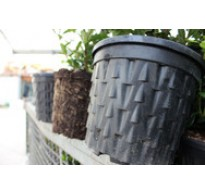 3.3Litre Root Pruning Air Pots