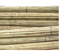 240cm (8ft) Bamboo Canes 18/20mm