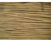 250 x 4ft (120cm) Bamboo Canes 12/14mm Diameter
