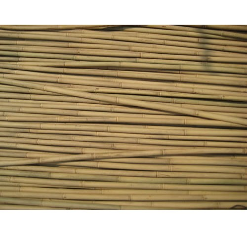 150 x  240cm (8ft) Bamboo Canes 12/14mm